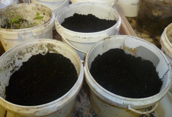 грунт готов к посеву семян