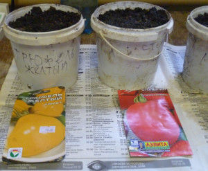 tomat-trufel-gelt