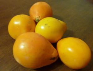 томат желтый трюфель