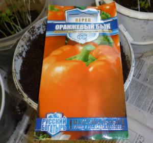 перец оранжевый бык