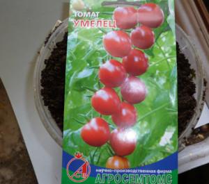 семена томатов умелец