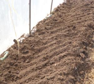 обработка грунта в теплице