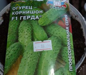 семена огурца корнишон герда