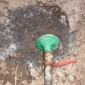 полив грунта в лунке